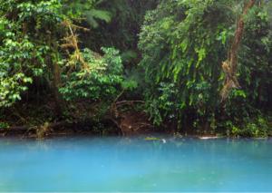 Rio Celeste water