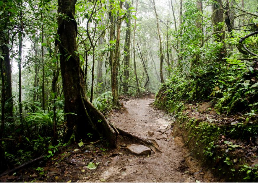 Costa Rica's rainy season